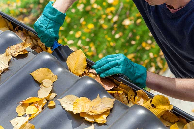 gutter cleaning lawn maintenance
