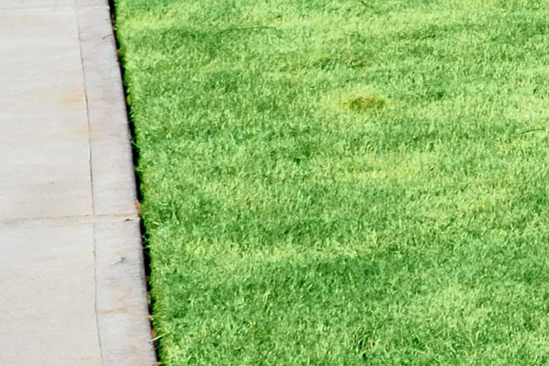 lawn edging lawn maintenance