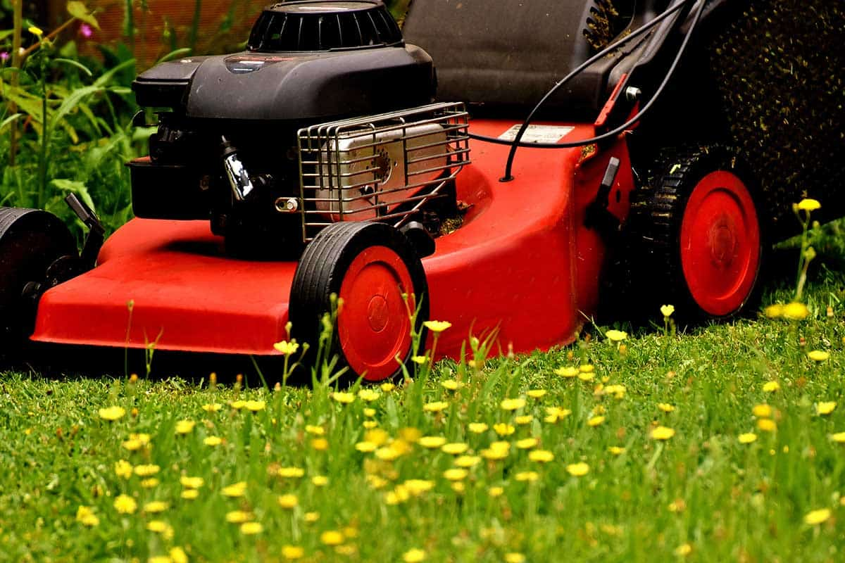 spring cleaning lawn maintenance