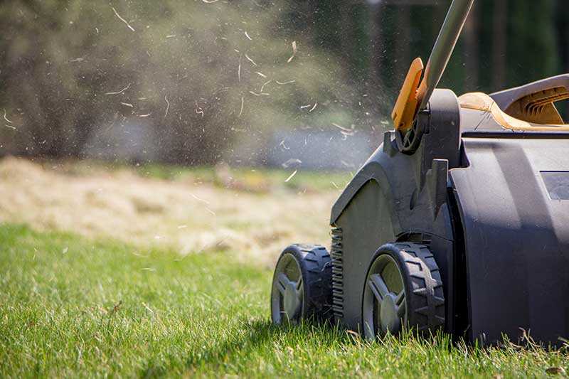 lawn aeration lawn care