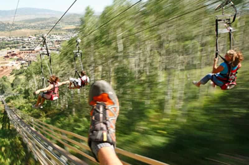 picture of people zip-lining