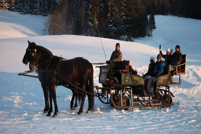 this is a picture of a sleigh ride