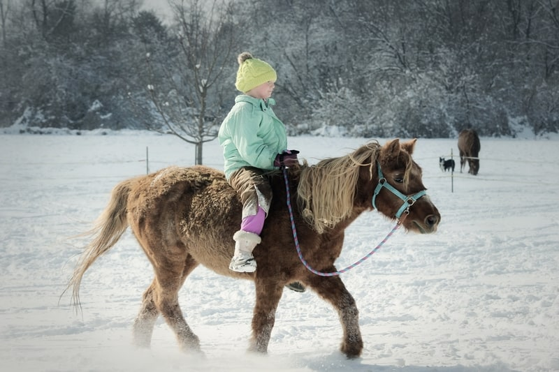 picture of a girl horseback riding