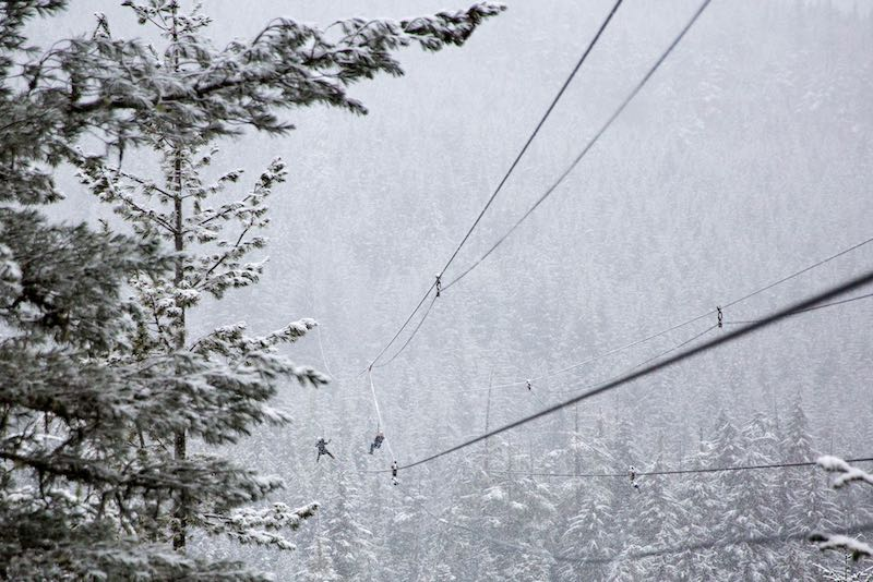 picture of a zipline